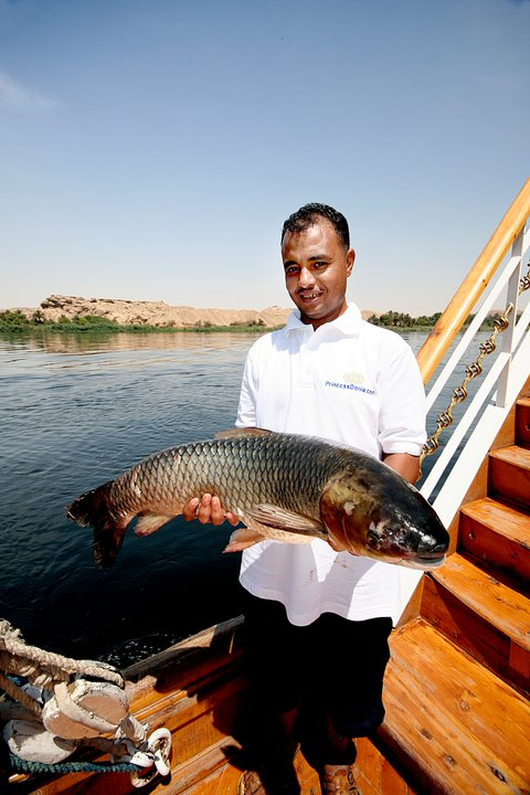MS Donia Dahabiya Nile Cruise6